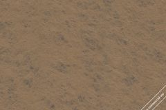 59779 cikkszámú tapéta.Egyszínű,különleges felületű,különleges motívumos,barna,gyengén mosható,illesztés mentes,vlies tapéta