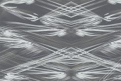 58305 cikkszámú tapéta.Absztrakt,különleges felületű,barna,fehér,szürke,lemosható,vlies tapéta