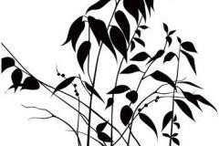 DM208-2 cikkszámú tapéta.Virágmintás,retro,természeti mintás,fa hatású-fa mintás,különleges motívumos,rajzolt,fehér,fekete,gyengén mosható,vlies poszter, fotótapéta