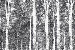 DM216-4 cikkszámú tapéta.Retro,természeti mintás,absztrakt,fa hatású-fa mintás,különleges motívumos,tájkép,rajzolt,fehér,fekete,gyengén mosható,vlies poszter, fotótapéta