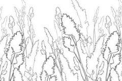 DM220-4 cikkszámú tapéta.Különleges motívumos,rajzolt,természeti mintás,fehér,fekete,gyengén mosható,vlies poszter, fotótapéta