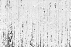 E021901-8 cikkszámú tapéta.Fa hatású-fa mintás,fotórealisztikus,geometriai mintás,fehér,fekete,gyengén mosható,vlies poszter, fotótapéta