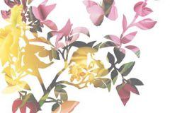P010501-6 cikkszámú tapéta.Rajzolt,retro,természeti mintás,virágmintás,fehér,lila,piros-bordó,sárga,zöld,gyengén mosható,vlies poszter, fotótapéta
