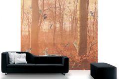 P011401-6 cikkszámú tapéta.Fa hatású-fa mintás,különleges motívumos,rajzolt,retro,bézs-drapp,piros-bordó,szürke,gyengén mosható,vlies poszter, fotótapéta