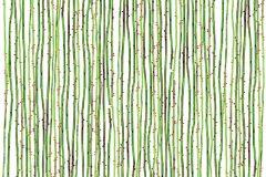 P191401-5 cikkszámú tapéta.3d hatású,absztrakt,csíkos,rajzolt,retro,természeti mintás,fehér,piros-bordó,zöld,gyengén mosható,vlies poszter, fotótapéta