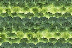 P193001-4 cikkszámú tapéta.3d hatású,absztrakt,fotórealisztikus,geometriai mintás,konyha-fürdőszobai,retro,természeti mintás,sárga,vajszín,zöld,gyengén mosható,vlies poszter, fotótapéta