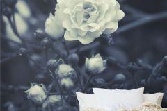 P150701-4 cikkszámú tapéta.3d hatású,fotórealisztikus,természeti mintás,virágmintás,fehér,fekete,kék,gyengén mosható,vlies poszter, fotótapéta