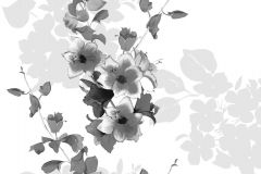 P142901-9 cikkszámú tapéta.Virágmintás,természeti mintás,fehér,fekete,gyengén mosható,vlies  tapéta