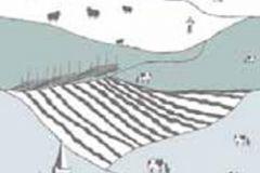P120905-2 cikkszámú tapéta.Gyerek,különleges motívumos,rajzolt,természeti mintás,fehér,fekete,kék,gyengén mosható,vlies poszter, fotótapéta