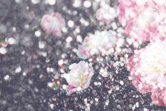 P280110-8 cikkszámú tapéta.Természeti mintás,virágmintás,fehér,fekete,pink-rózsaszín,lemosható,vlies poszter, fotótapéta