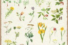 P160401-4 cikkszámú tapéta.Természeti mintás,piros-bordó,barna,sárga,zöld,vajszínű,gyengén mosható,vlies poszter, fotótapéta