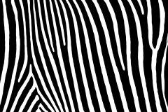 P161201-9 cikkszámú tapéta.Absztrakt,csíkos,geometriai mintás,különleges motívumos,rajzolt,retro,fehér,fekete,gyengén mosható,vlies poszter, fotótapéta