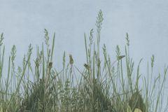 P162301-4 cikkszámú tapéta.Természeti mintás,fotórealisztikus,kék,barna,zöld,gyengén mosható,vlies poszter, fotótapéta
