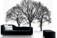 P020501-8 cikkszámú tapéta.Fa hatású-fa mintás,fotórealisztikus,fehér,fekete,gyengén mosható,vlies poszter, fotótapéta