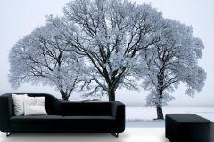 P020502-9 cikkszámú tapéta.Fa hatású-fa mintás,fotórealisztikus,fehér,fekete,kék,gyengén mosható,vlies poszter, fotótapéta