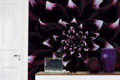 DM319-1 cikkszámú tapéta.Virágmintás,fotórealisztikus,fekete,lila,gyengén mosható,vlies poszter, fotótapéta