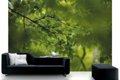 DM322-1 cikkszámú tapéta.Természeti mintás,fotórealisztikus,zöld,gyengén mosható,vlies poszter, fotótapéta