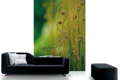 DM324-2 cikkszámú tapéta.Természeti mintás,fotórealisztikus,barna,zöld,gyengén mosható,vlies poszter, fotótapéta