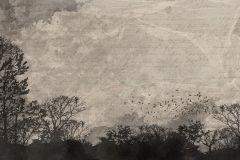 P231601-8 cikkszámú tapéta.Fa hatású-fa mintás,feliratos-számos,különleges motívumos,rajzolt,természeti mintás,bézs-drapp,fekete,szürke,gyengén mosható,vlies poszter, fotótapéta
