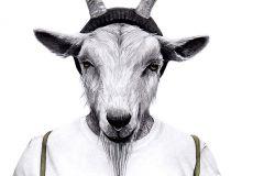 P201401-2 cikkszámú tapéta.3d hatású,állatok,emberek-sztárok,fotórealisztikus,retro,fehér,fekete,szürke,gyengén mosható,vlies poszter, fotótapéta