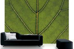 P031501-8 cikkszámú tapéta.Fa hatású-fa mintás,különleges motívumos,természeti mintás,virágmintás,zöld,gyengén mosható,vlies poszter, fotótapéta