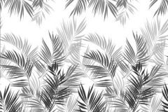 P031601-6 cikkszámú tapéta.Különleges motívumos,természeti mintás,fehér,fekete,gyengén mosható,vlies poszter, fotótapéta