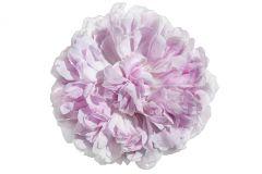 E040610-6 cikkszámú tapéta.Különleges motívumos,fotórealisztikus,virágmintás,természeti mintás,fehér,szürke,pink-rózsaszín,gyengén mosható,vlies poszter, fotótapéta