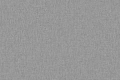 05713-50 cikkszámú tapéta.Egyszínű,szürke,gyengén mosható,illesztés mentes,papír tapéta