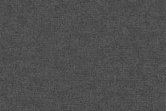 05713-70 cikkszámú tapéta.Egyszínű,fekete,szürke,gyengén mosható,illesztés mentes,papír tapéta