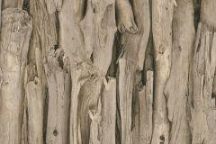 473216 cikkszámú tapéta.Absztrakt,fa hatású-fa mintás,természeti mintás,barna,bézs-drapp,lemosható,vlies tapéta
