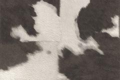 473919 cikkszámú tapéta.Absztrakt,bőr hatású,különleges felületű,természeti mintás,fehér,fekete,szürke,lemosható,vlies tapéta