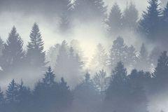 860832 cikkszámú tapéta.Fa hatású-fa mintás,különleges felületű,különleges motívumos,természeti mintás,kék,szürke,lemosható,vlies tapéta