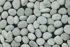 09-SHARK cikkszámú tapéta.Kőhatású-kőmintás,különleges motívumos,fekete,szürke,lemosható,papír tapéta