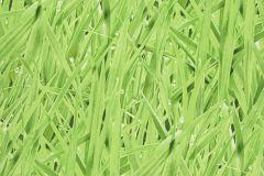 16-MOSS cikkszámú tapéta.Különleges motívumos,természeti mintás,zöld,lemosható,papír tapéta
