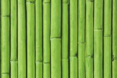 26-AMAZONE cikkszámú tapéta.Természeti mintás,fekete,zöld,lemosható,papír tapéta