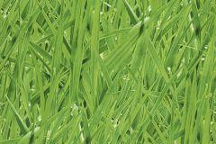 27-GRASS cikkszámú tapéta.Különleges motívumos,természeti mintás,zöld,lemosható,papír tapéta