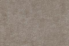 81-BRONZE cikkszámú tapéta.Bőr hatású,különleges motívumos,barna,illesztés mentes,gyengén mosható,papír tapéta