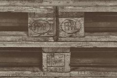 524109 cikkszámú tapéta.Fa hatású-fa mintás,különleges motívumos,barna,lemosható,vlies tapéta