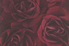 525625 cikkszámú tapéta.Virágmintás,fekete,piros-bordó,lemosható,vlies tapéta