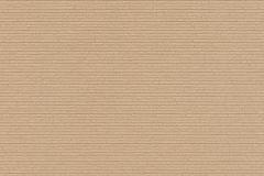 939231 cikkszámú tapéta.Egyszínű,barna,lemosható,vlies tapéta