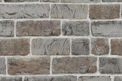 217339 cikkszámú tapéta.Kőhatású-kőmintás,szürke,gyengén mosható,papír tapéta