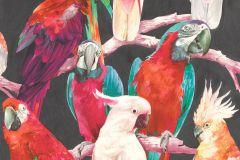 803129 cikkszámú tapéta.állatok,különleges motívumos,rajzolt,természeti mintás,bézs-drapp,fekete,kék,lila,narancs-terrakotta,pink-rózsaszín,piros-bordó,szürke,türkiz,vajszín,zöld,lemosható,vlies tapéta