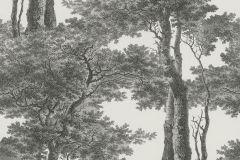 605419 cikkszámú tapéta.Fa hatású-fa mintás,tájkép,természeti mintás,ezüst,fehér,szürke,lemosható,vlies tapéta